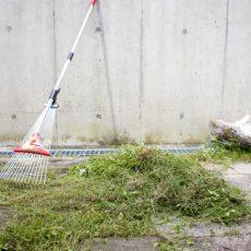 憧れのガーデンリビングを作る為の基本|庭に芝生を植えよう編の画像