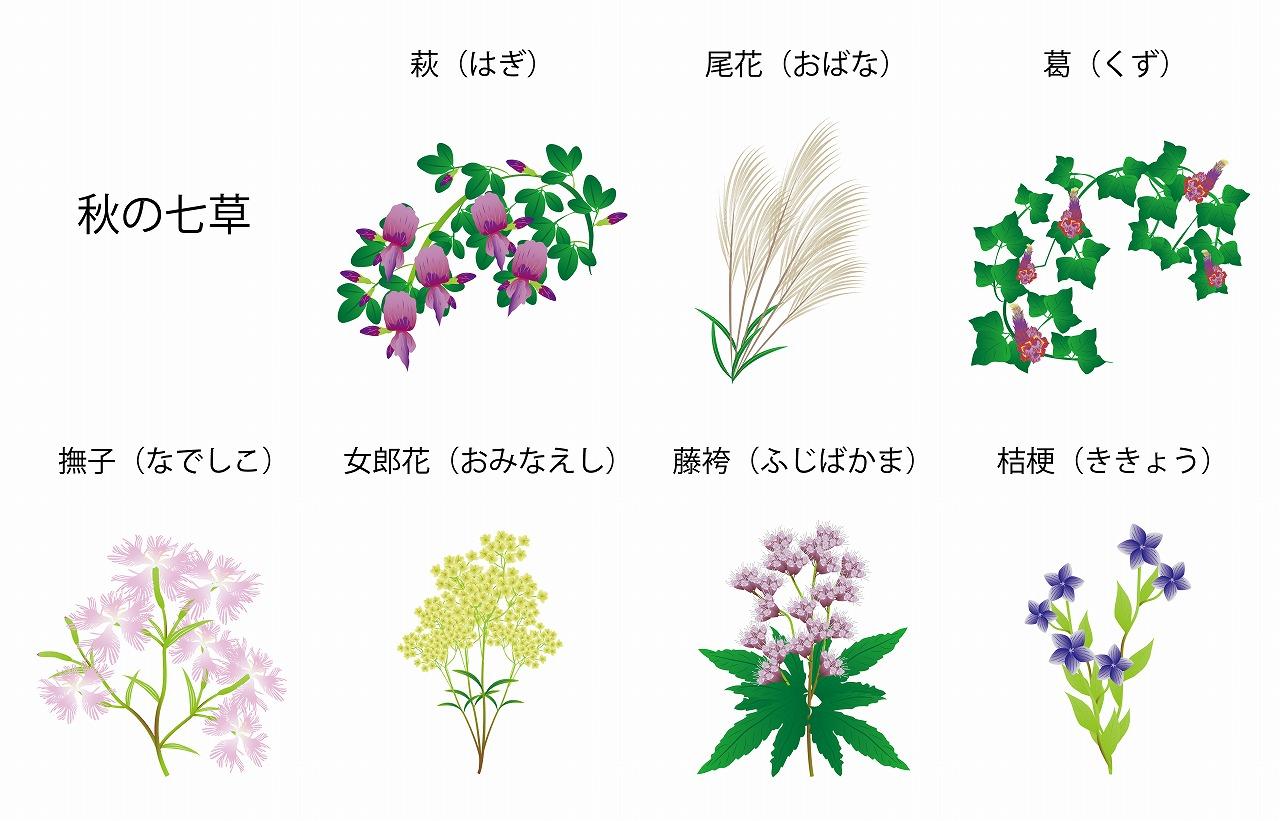 意味 秋 の 七草
