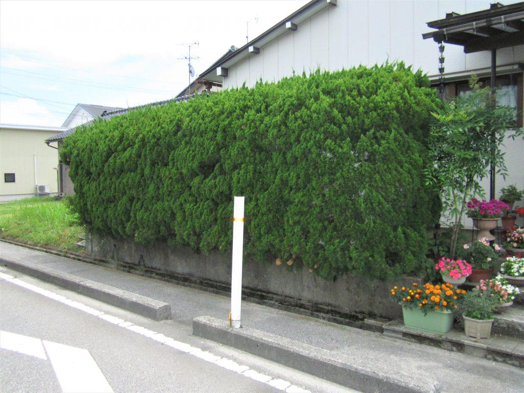 植栽からアルミ目隠しフェンス設置工事